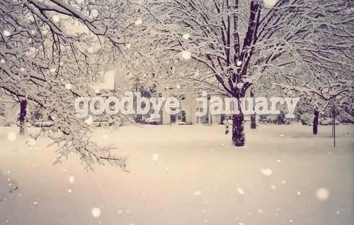61583 Goodbye January