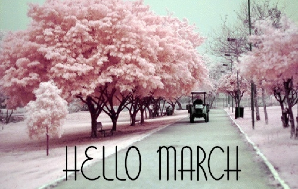 Pink picture march